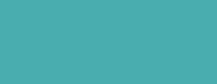 logo-iseam-bleu-217x84